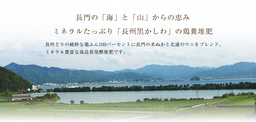 nagatonomegumi02
